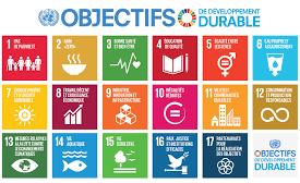 objectifs développement durable ONU.png